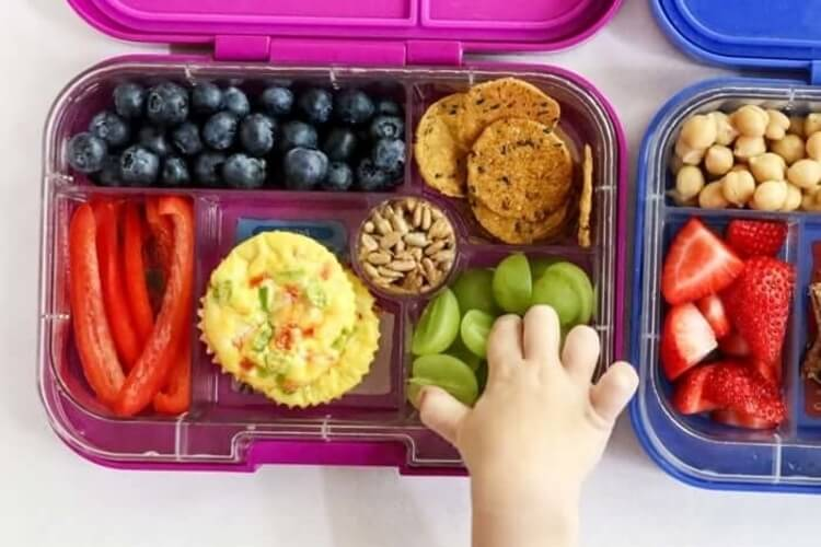 Best Lunch Boxes & Bags for Kids