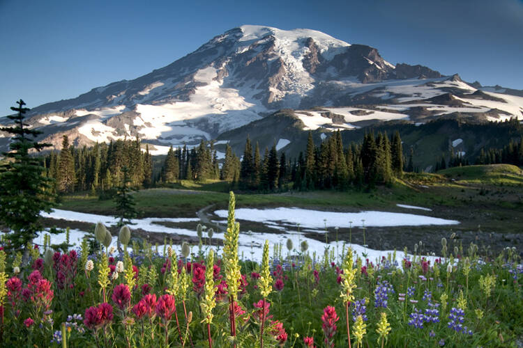 The Wonderland Trail - Mount Rainier National Park